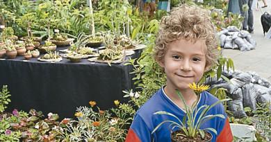 Começo da Primavera tem opções com festival, feira de flores e shows