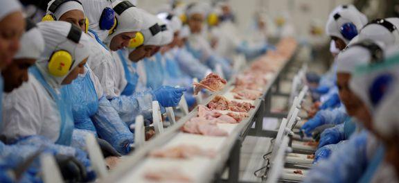 UE e 14 países suspendem temporariamente importação de carne brasileira
